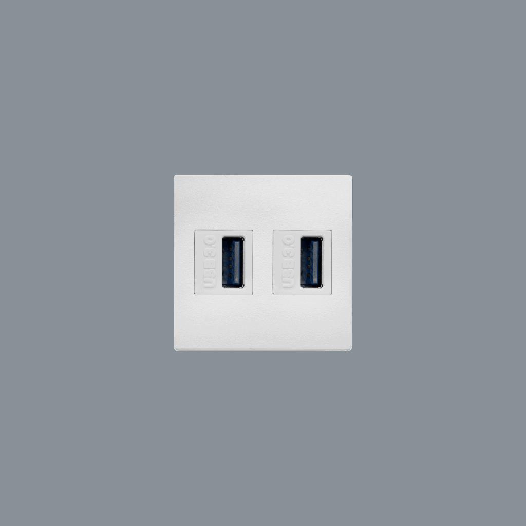 Double USB keystone